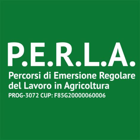 Pubblicato il bando per la selezione di un team di esperti  per il Progetto PERLA